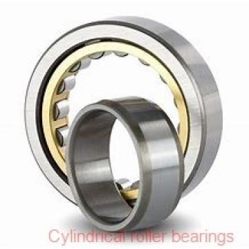 30 mm x 62 mm x 23.8 mm  Rollway U5206B Cylindrical Roller Bearings