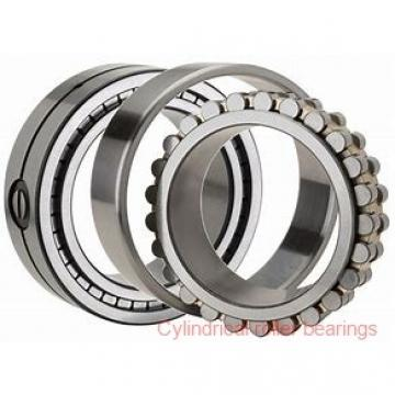 Link-Belt MU1309TV Cylindrical Roller Bearings
