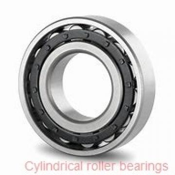 40 mm x 68 mm x 21 mm  INA SL183008 Cylindrical Roller Bearings