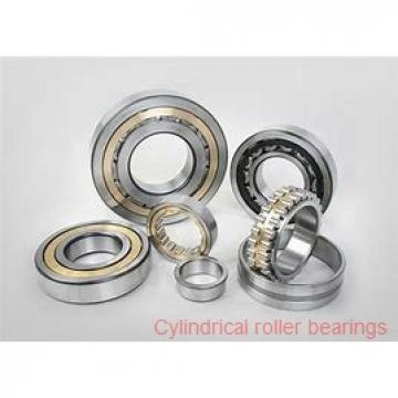 75 mm x 130 mm x 41.3 mm  Rollway E5215B Cylindrical Roller Bearings